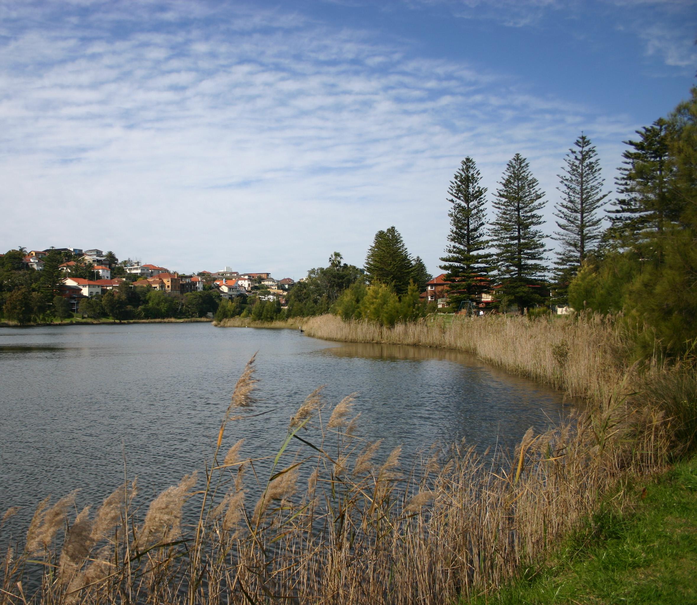 queenscliff lagoon